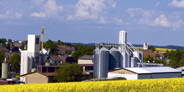 Rapsfeld im Vordergrund Agrarhandel im Hintergrund